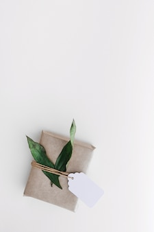 Wrapped gift box with tag and leaves on white background