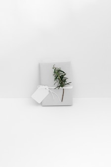 Wrapped gift box with twig and blank tag against white backdrop