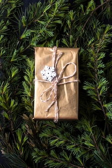 Wrapped gift on tree branches