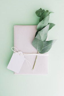 Wrapped white gift box with blank tag and twig on pastel background