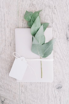 Wrapped white present with blank tag and twig on wooden background
