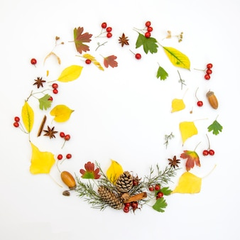 Wreath of autumn leaves on a white background. autumn concept