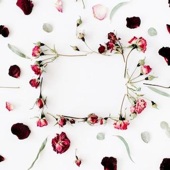 バラ、ユーカリ、枝、葉、花びらが白で隔離の花輪フレーム