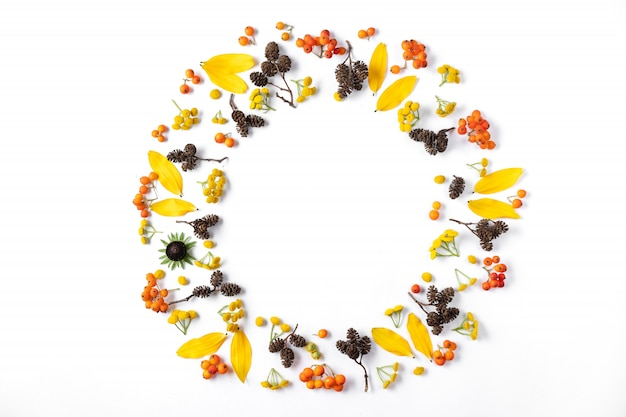 Wreath made of leaves, cones and rowan on white background.