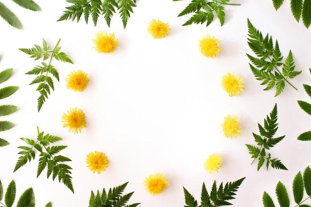 봄 노란 민들레 꽃과 고사리 녹색으로 만든 화환 흰색 배경 복사 공간에 나뭇잎