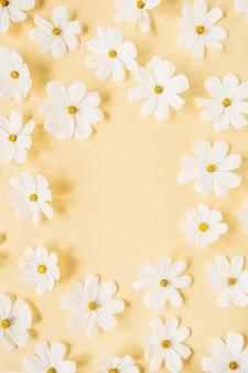 옅은 노란색 배경에 흰색 데이지 카모마일 꽃으로 만든 화환