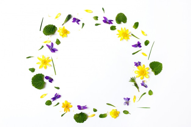 Wreath made of yellow flowers on white background