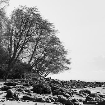 Живописный вид на скалистый пляж, wreck beach, foresore trail, ванкувер, британская колумбия, канада