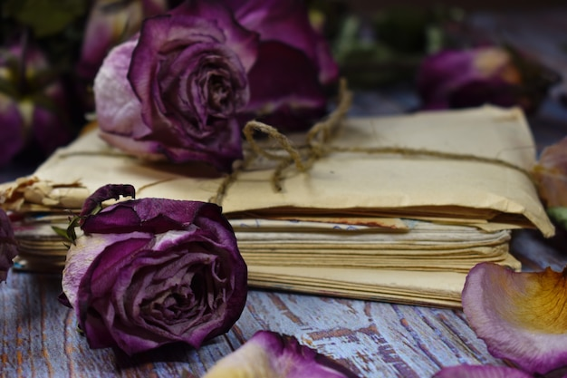 Writing memoirs. memories of the past. vintage photo with dry flowers and an album.