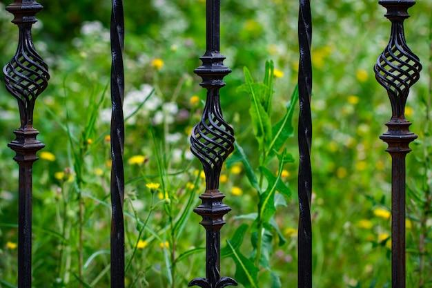 錬鉄製の門、装飾用の鍛造品、鍛造された要素がクローズアップされています。