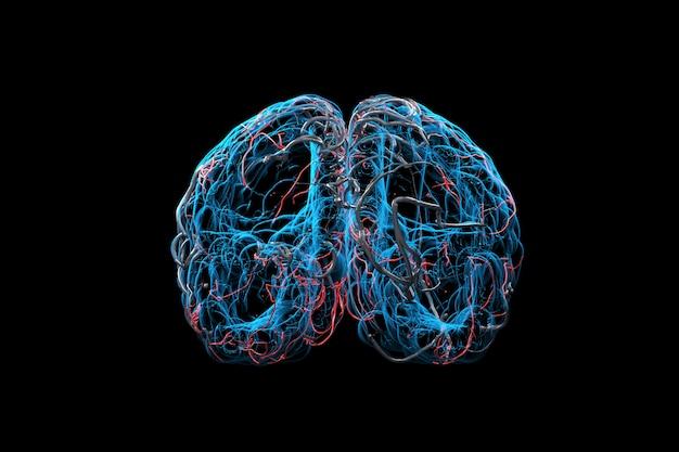 X線脳の概念を閉じます。 3dレンダリング。