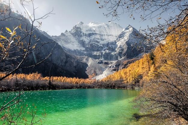 Xiannairi mountain on emerald lake with golden pine forest in autumn
