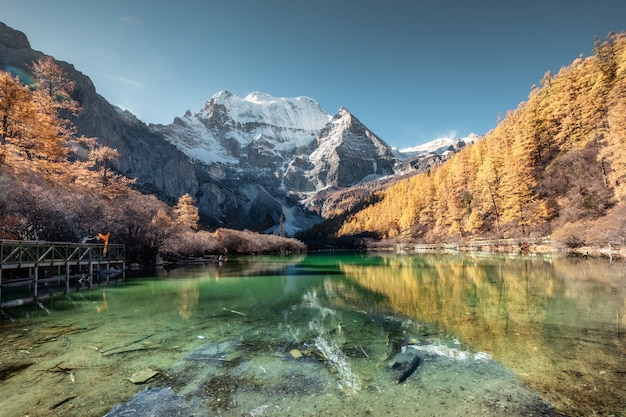 Xiannairi mountain reflection on emerald lake with golden pine forest in autumn