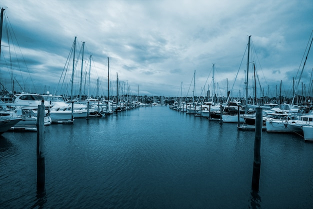 Yachts in half moon bay, auckland, new zealand