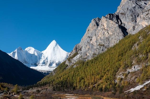 Yading自然保護区で秋の森と雪の山でカラフル