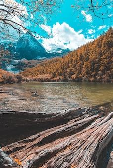 Yading自然保護区で秋の森と雪の山でカラフルです