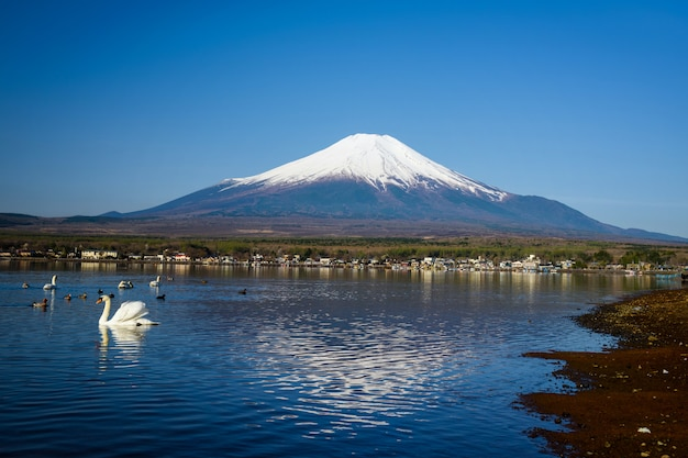 Yamanaka lake with mount fuji