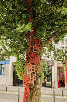 Yarn bombing - urban street art. tree trunks decorated with (dressed in) beautifully knitted