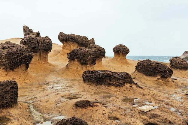 Геопарк yehliu ни с кем, мыс на северном побережье тайваня. пейзаж соты и грибных скал, разрушенных морем.