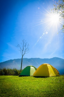 Yellow and green camping tent on grass near mountain river in morning