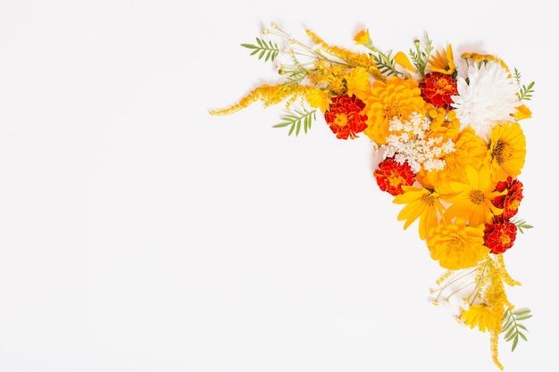 白い表面に黄色とオレンジ色の花