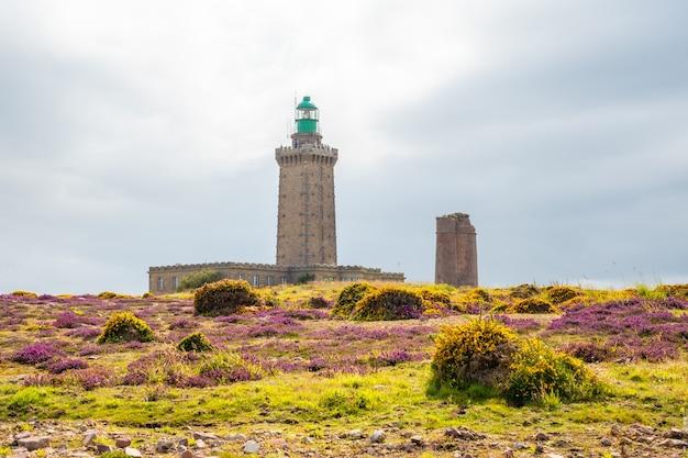 Летом желтые и розовые цветы в phare du cap frehel - морской маяк в кот-д'армор (франция). на вершине мыса фрехеля
