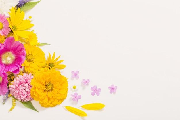 흰 벽에 노란색과 분홍색 꽃