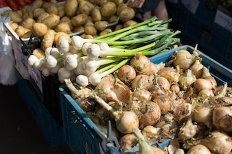 Yellow and spring onions for sale