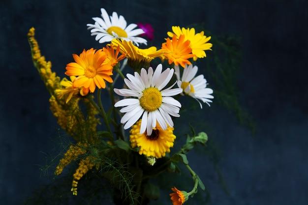 어두운 배경에 노란색과 흰색 여름 필드 꽃. 약용 식물
