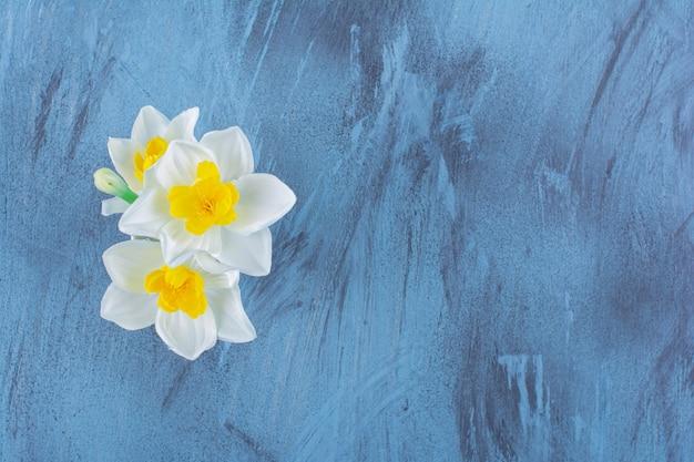 Желто-белые трубы-нарциссы красиво цветут в вазе.