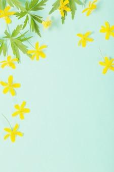 緑の紙の背景に黄色のアネモネ