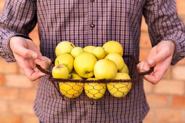 男性の手でバスケットの黄色いリンゴ。食用秋収穫りんご