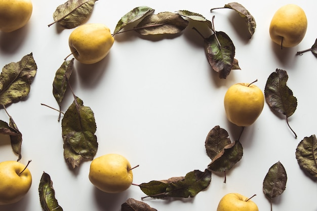 Желтые яблоки на белом фоне со старыми листьями