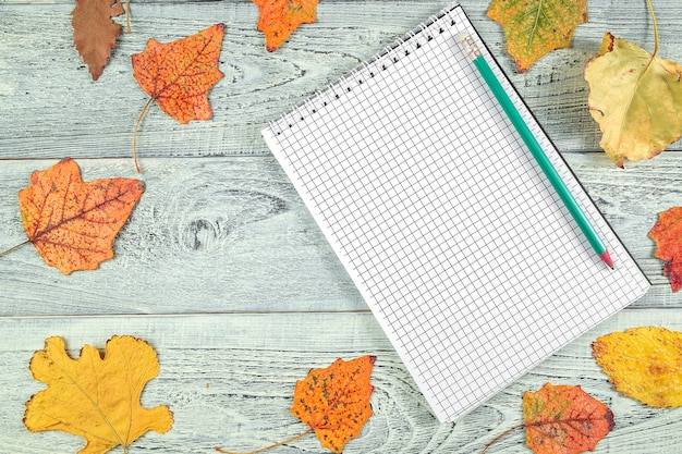 Yellow autumn leaves and a notebook on a light old wooden background
