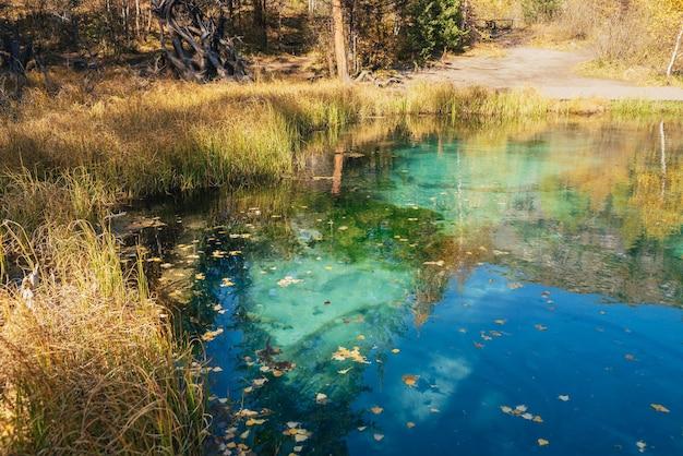 山の湖の澄んだ水面に黄色い紅葉があり、日差しの中で金色の木々が映っています。秋の色のターコイズブルーの湖の明るい自然の背景。秋の美しい湖。
