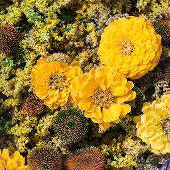 黄色い秋の花の背景。上面図