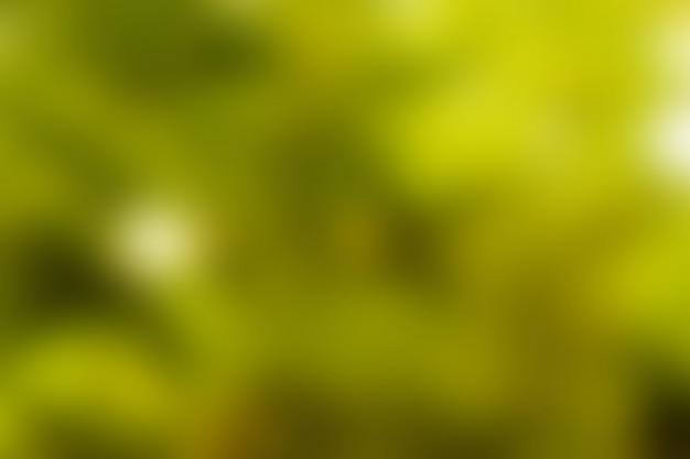 Yellow background, bokeh blur background