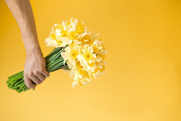 Yellow background and male hands with a bouquet of yellow daffodils. the concept of greetings and women's day.