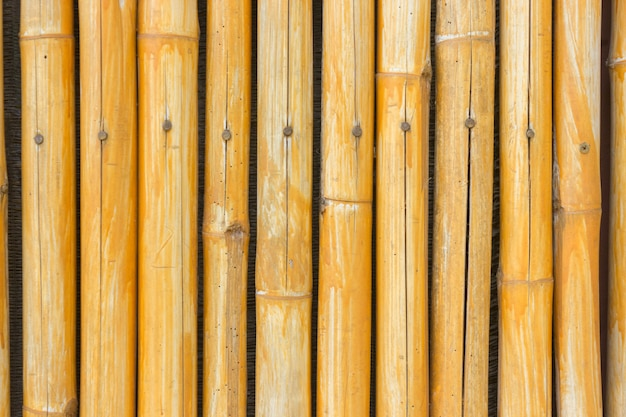 Yellow bamboo fence background