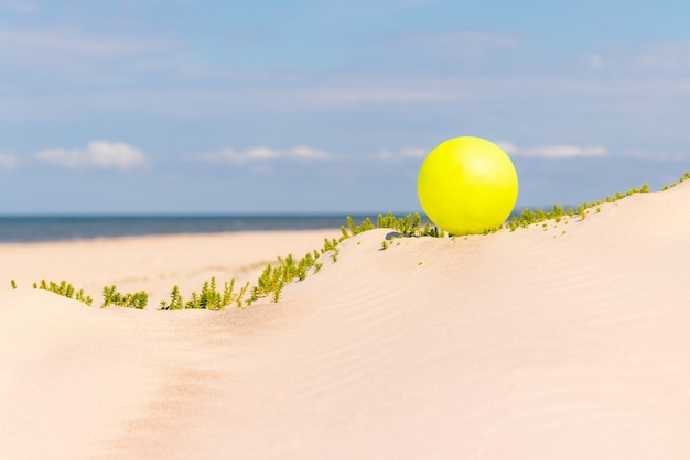 Yellow beach ball on the sand by the water on a sunny day.