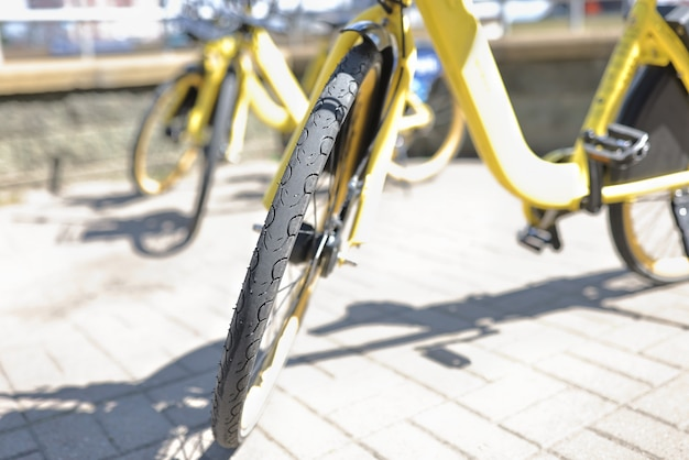 Yellow bicycles are parked in parking lot.