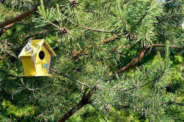 A yellow birdhouse hangs on a prickly tree. ornamental bird house. sunny bright lighting.