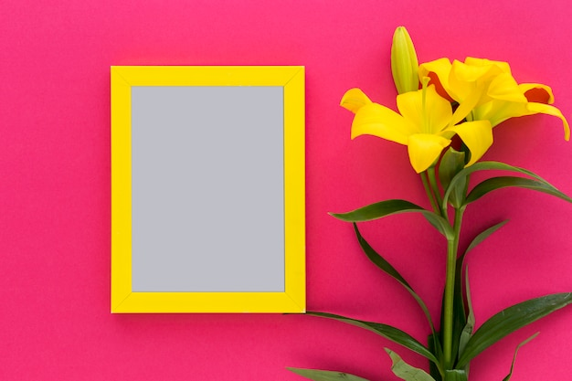 Yellow black frame with yellow lily flower and bud on pink backdrop