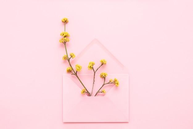 분홍색 배경에 분홍색 봉투에 노란색 꽃이 만발한 지점. 안녕하세요 봄 개념. 평면도.