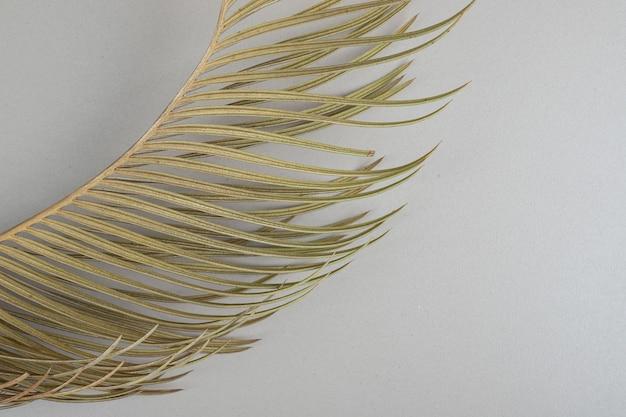 ベージュの表面に黄色い枝の葉