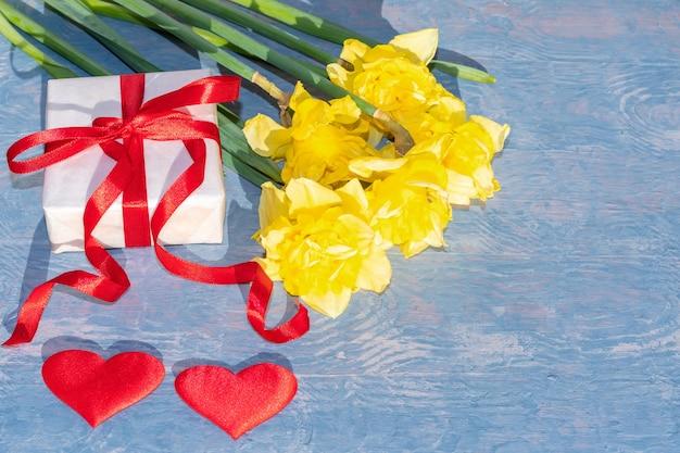 Желтые яркие нарциссы, белая подарочная коробка с красной лентой и два красных сердца на синем деревянном фоне.