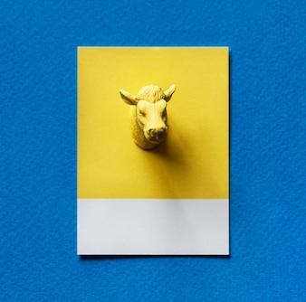 Yellow bulls head on paper