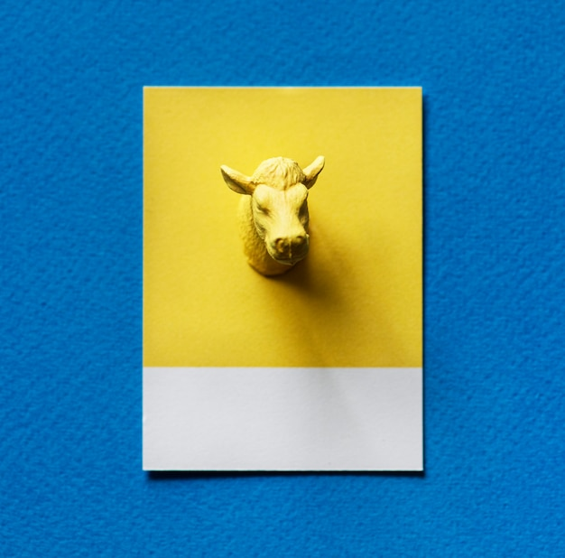 Желтая голова быка на бумаге