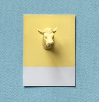 黄色い雄牛が紙に頭を向ける