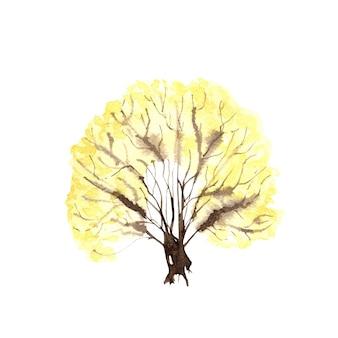 白い背景の上の黄色い茂み。手描きの水彩イラスト。